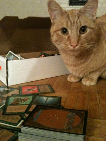 Toro has been known to play Magic: The Gathering.